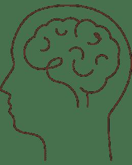 Vidalia-cerebro